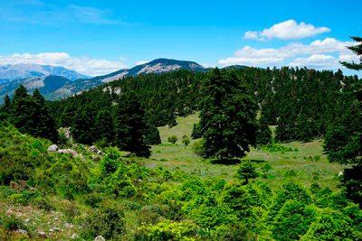 Ελικώνας, το βουνό των Μουσών
