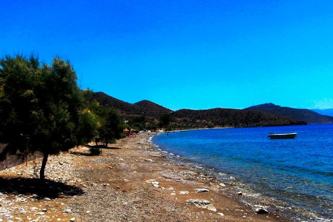 Παραλία Άγιος Νικόλαος Βοιωτίας